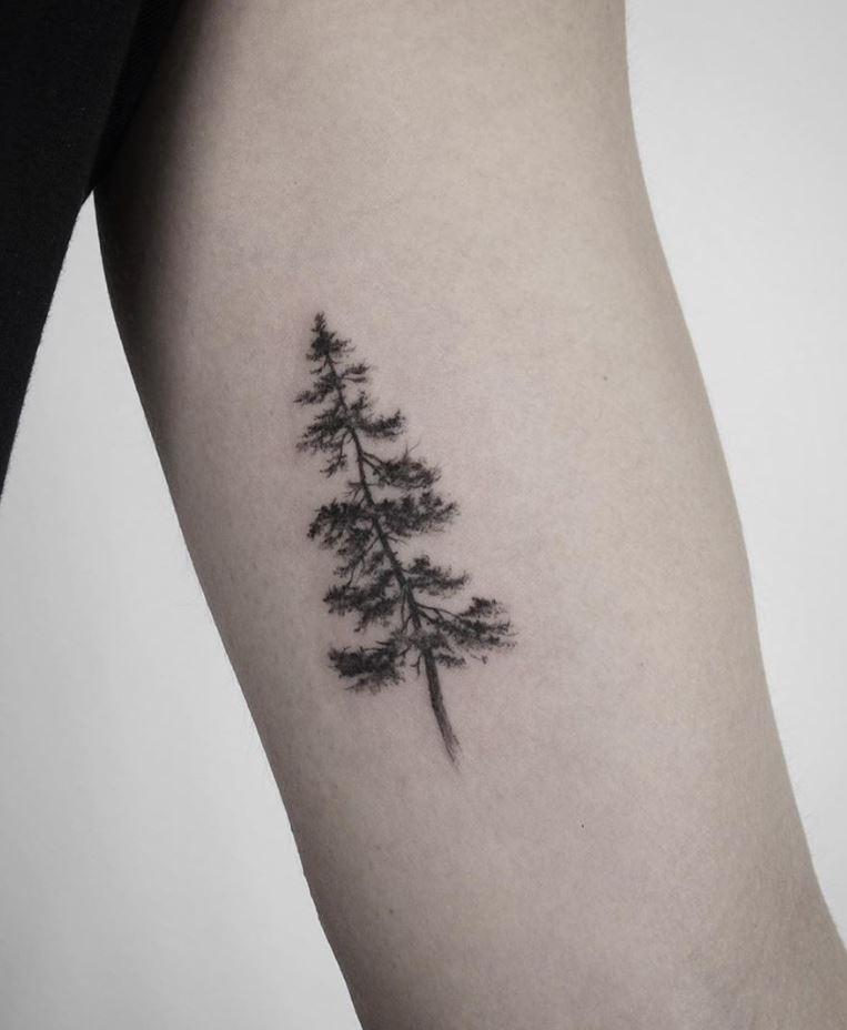 Black Pine Tree Tattoo